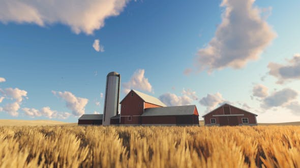 Thumbnail for Wheat Field and Farm