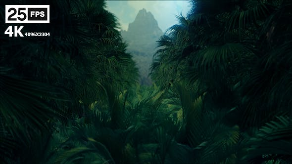 Cover Image for Jungle Palms 4K