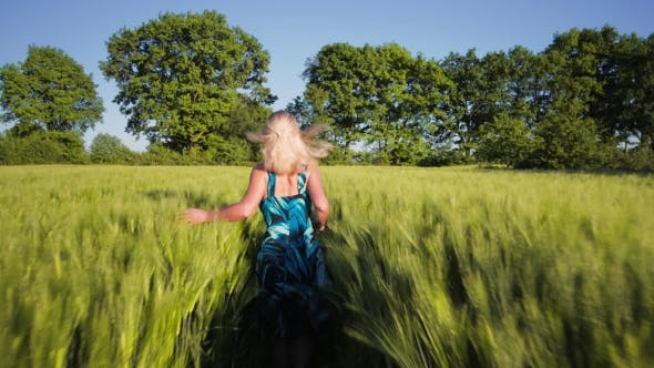A Young Blond Girl Wear Blue Dress Running Through a Wheat Field