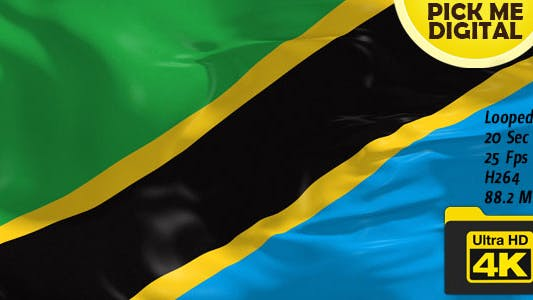 Cover Image for Tanzania Flag 4K