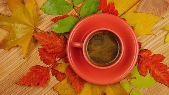 Cover Image for Autumn Leaves with Coffee