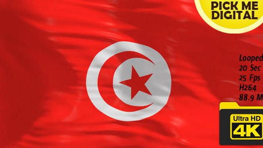 Thumbnail for Tunisia Flag 4K