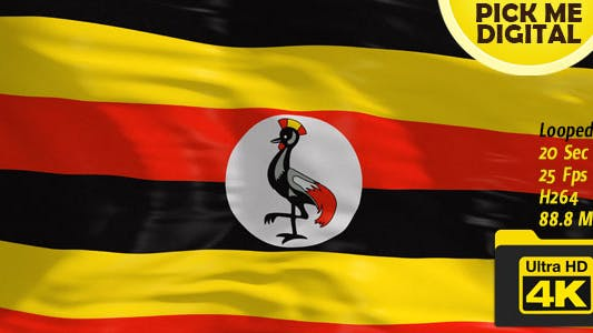 Thumbnail for Uganda Flag 4K