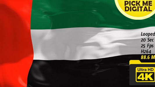 Thumbnail for United Arab Emirates Flag 4K