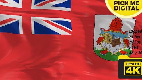 UK-Bermuda Flag 4K