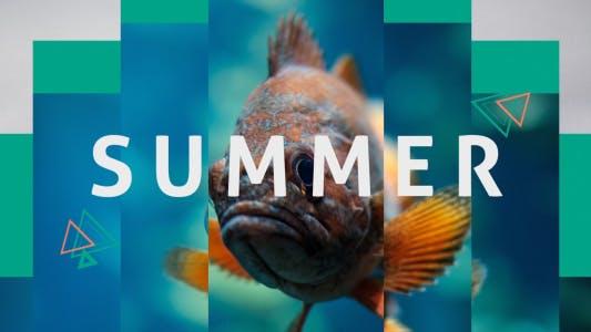 Thumbnail for Abridor dinámico de verano
