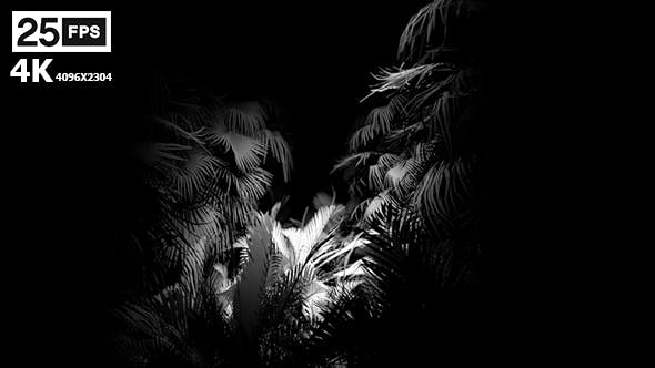 Thumbnail for Jungle Palms 04FN