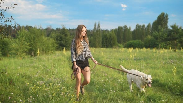 Thumbnail for Young Attractive Sporty Woman Running with Her Dog in Park at Country Side.
