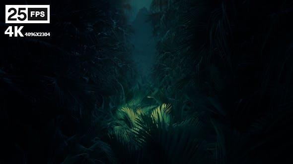Thumbnail for Jungle Palms 02 4K
