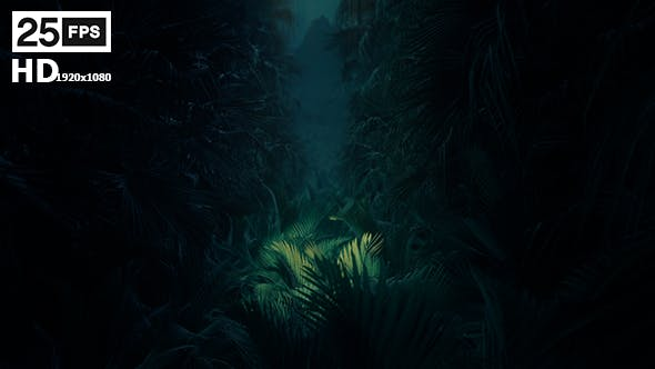 Thumbnail for Jungle Palms 02 HD