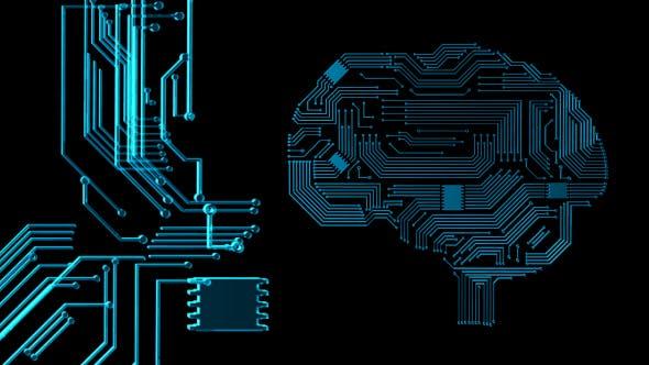 Thumbnail for Brain Circuits