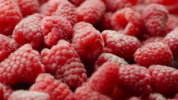 Thumbnail for Many Raspberry Berries Rotate, Background of Berries