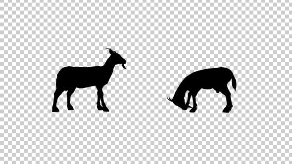 Thumbnail for Goats Silhouette