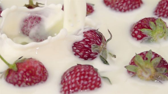 Thumbnail for Ripe Strawberries with the Milk.