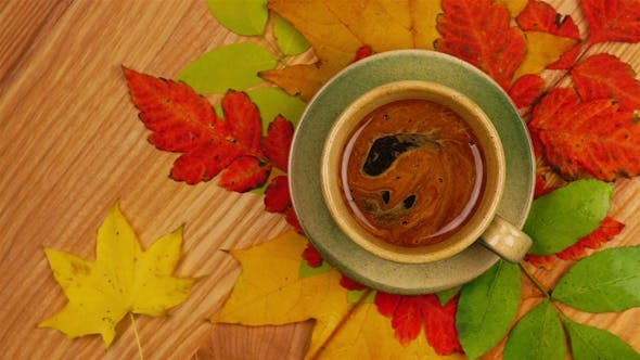 Thumbnail for Autumn Leaves with Coffee