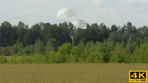 Skydiver Dangerous Landing with Two Parachutes To Trees