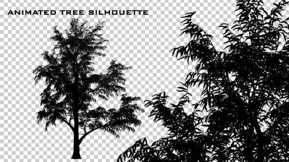 Thumbnail for Animated Tree Silhouette
