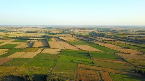 Drone Shot of Plantations