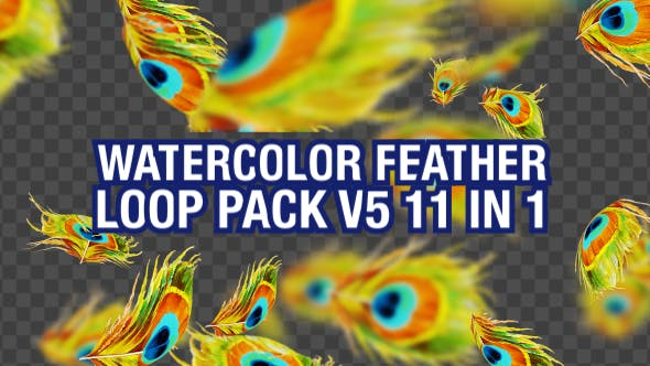 Watercolor Falling Feather Pack V5 11 in 1