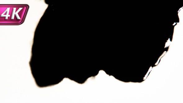 Thumbnail for Black Fast Absorbing White