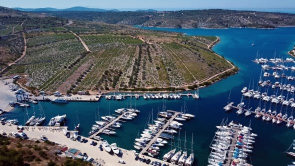 Thumbnail for Marina and Vineyards Near Primosten, Croatia