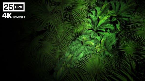 Thumbnail for Jungle Palms 07 4K