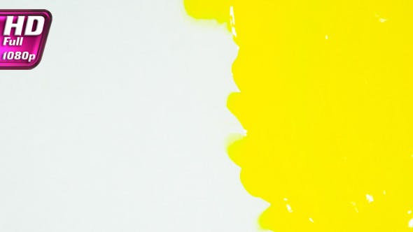 Thumbnail for Yellow Paint Covers White