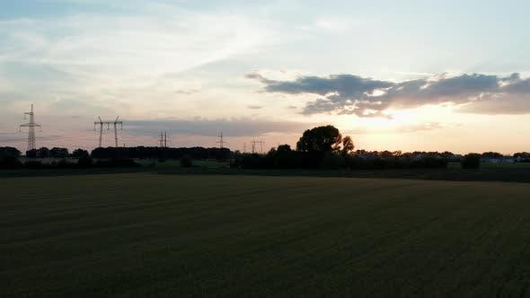 Weizen Sunset