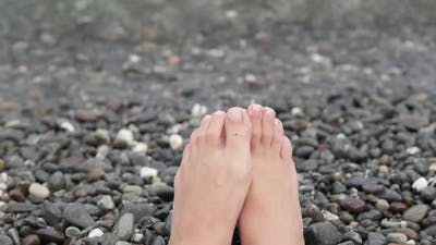 Woman Feet Walking Barefoot on Sandy Beach of Sea