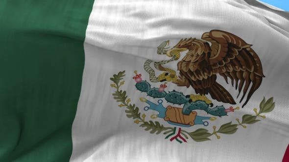 Mexico Flag in the Wind