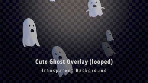 Netter Ghost Overlay