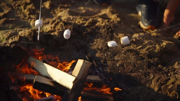 Shot of Skewers with Marshmallow, Which Is Cooked on Fire on Summer Day