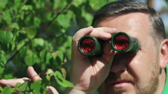 Thumbnail for Man Watching with Binoculars Among the Trees in the Forest