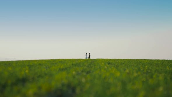 Thumbnail for Blured Bride and Groom at a Wedding Stay on the Green Field