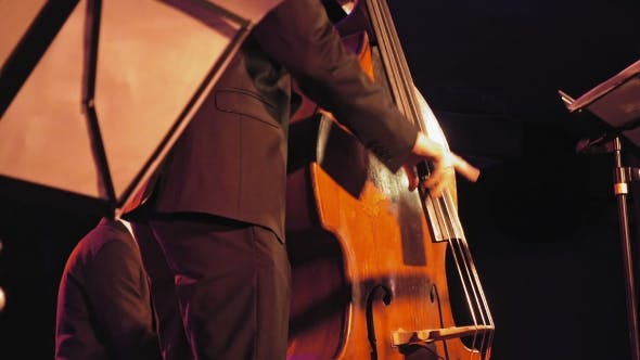 Thumbnail for Double Bass Player on the Stage