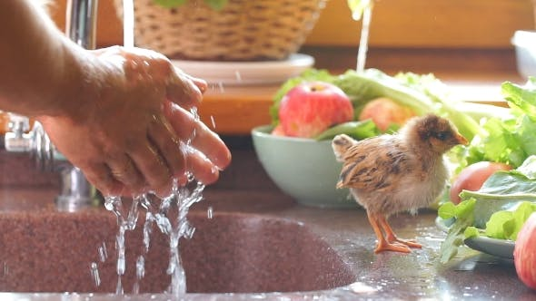 Thumbnail for Der Mann wäscht seine Hände. Hände waschen. Hände putzen. Hygiene.