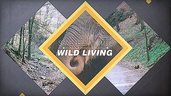Thumbnail for Wild Living