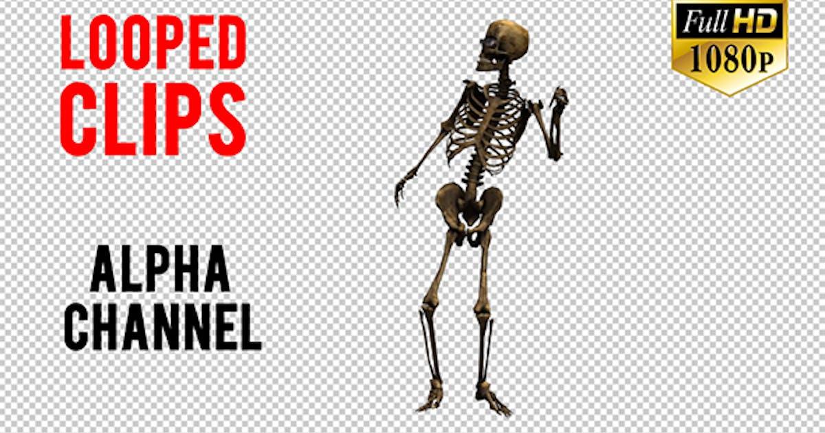 Skeleton Dance Looped 7