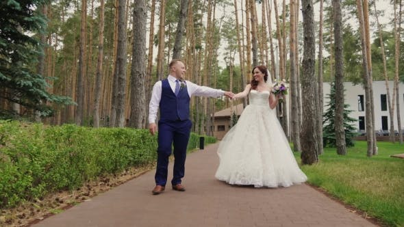 The Bride and Groom Are Walking in the Park.