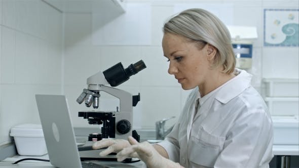 Thumbnail for Scientist or Student Using Laptop Computer and Microscope