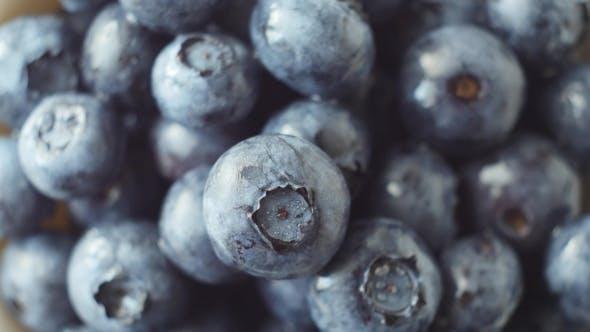 Thumbnail for Fresh, Ripe Blue Berries Rotate