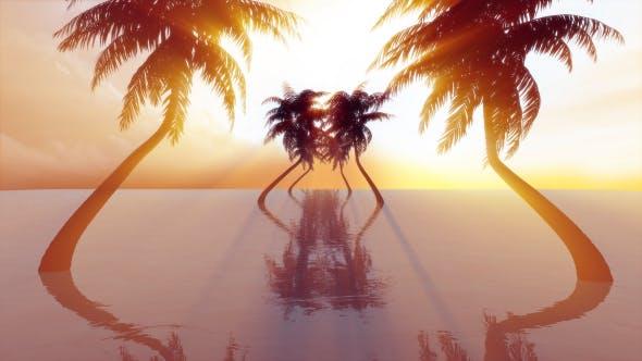 Thumbnail for Sunshine Heaven Sea