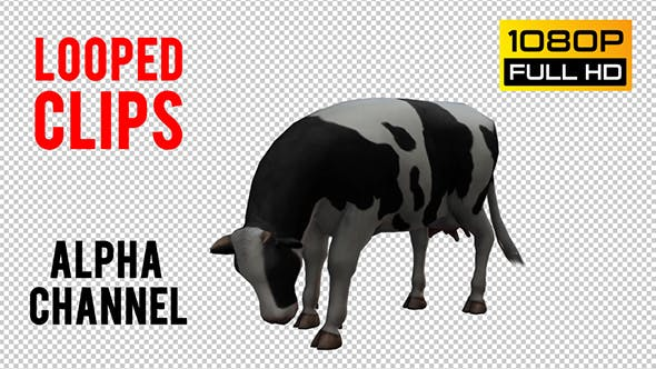 Thumbnail for Cow Looped 2