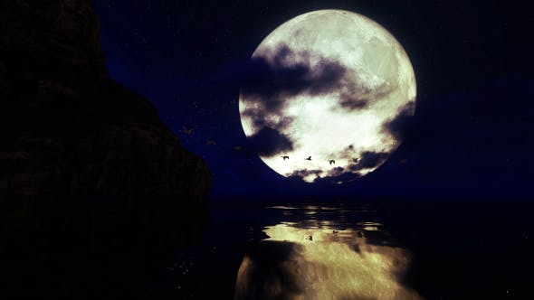Thumbnail for Flock of Swans Flying Over Water Against the Background of a Full Moon
