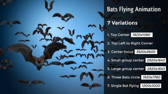 Bats Flying Animation – 7 Clips
