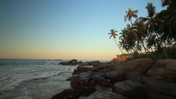 Thumbnail for Palm Trees on the Shore of a Tropical Beach at Sunset