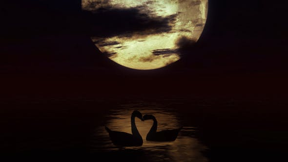 Thumbnail for Two Swans in the Water Against the Background of a Big Moon 2