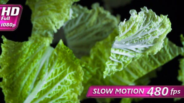 Thumbnail for Leaves Of Chinese Cabbage
