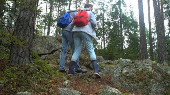Thumbnail for Elderly Active Couple Climbing on the Rock in the Northern Forest