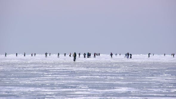 Thumbnail for Group of Skiers and Cyclists Racing on Skis on the Snowy Ice.